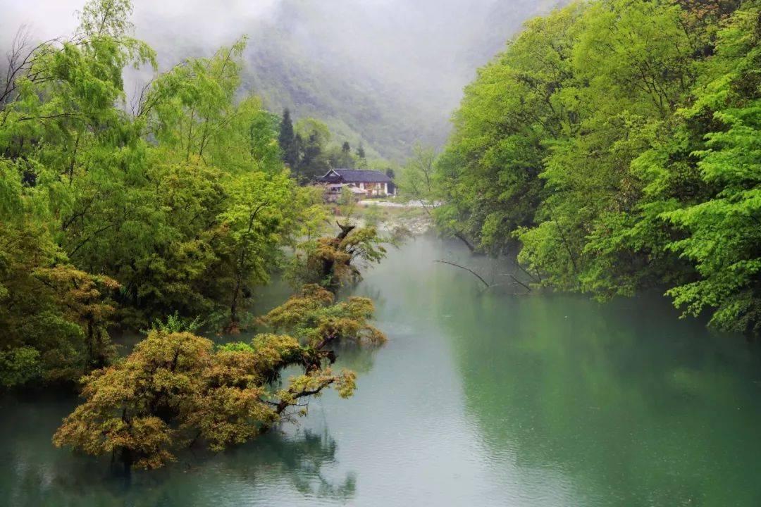 寂静的屋舍坐落在烟雾缭绕的董家河上